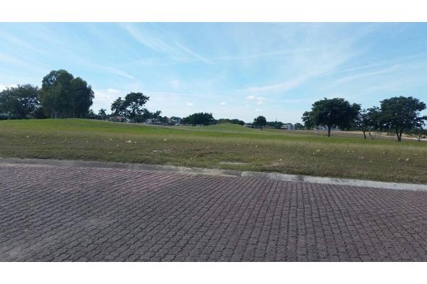 Foto de terreno habitacional en venta en laguna aguada grande 0, residencial lagunas de miralta, altamira, tamaulipas, 2651500 No. 04