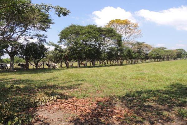 Foto de terreno habitacional en venta en laguna de los limones , huimanguillo, huimanguillo, tabasco, 8294017 No. 02