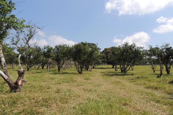 Foto de terreno habitacional en venta en laguna de los limones , huimanguillo, huimanguillo, tabasco, 8294017 No. 03