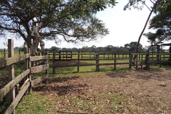 Foto de terreno habitacional en venta en laguna de los limones , huimanguillo, huimanguillo, tabasco, 8294017 No. 05