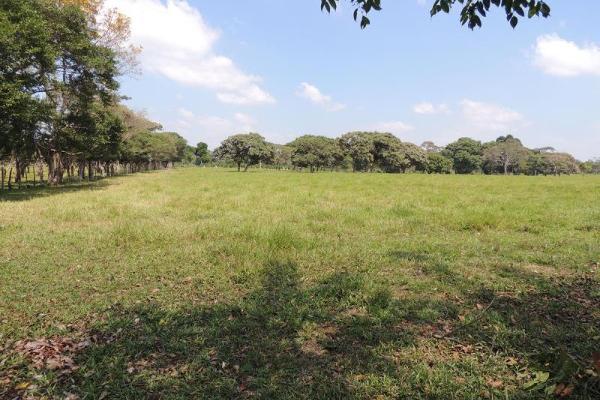 Foto de terreno habitacional en venta en laguna de los limones , huimanguillo, huimanguillo, tabasco, 8294017 No. 08