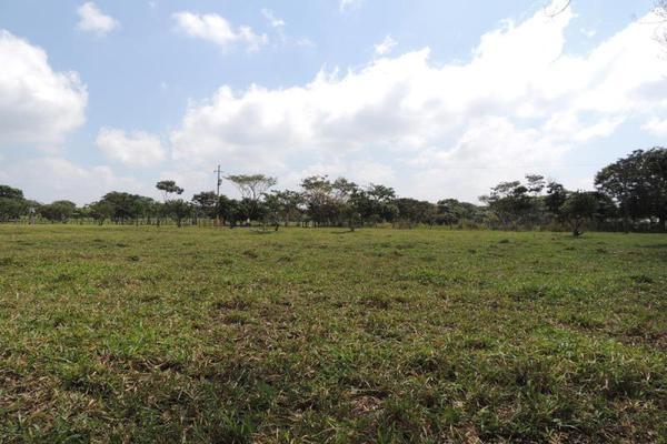 Foto de terreno habitacional en venta en laguna de los limones , huimanguillo, huimanguillo, tabasco, 8294017 No. 09