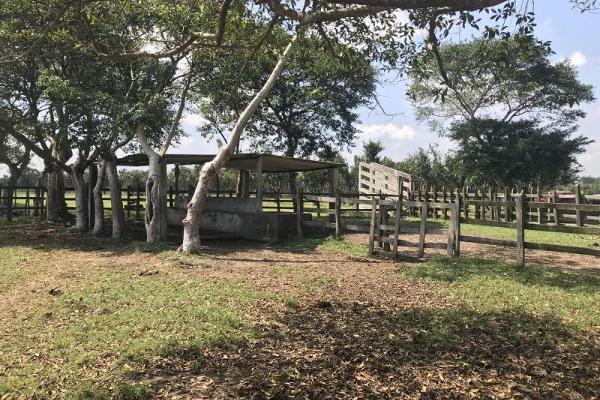 Foto de terreno habitacional en venta en laguna de los limones , huimanguillo, huimanguillo, tabasco, 8294017 No. 10