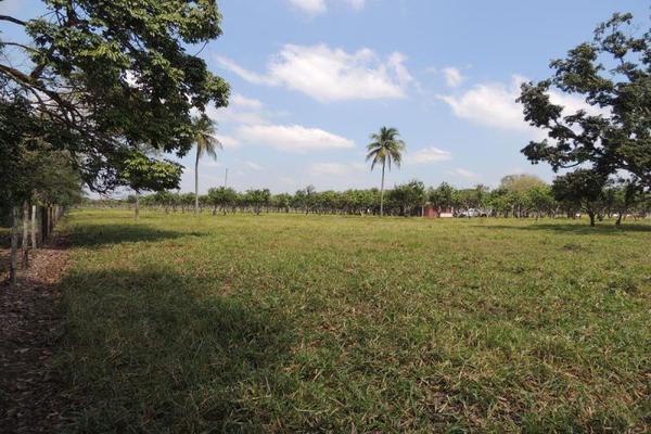 Foto de terreno habitacional en venta en laguna de los limones , huimanguillo, huimanguillo, tabasco, 8294017 No. 11