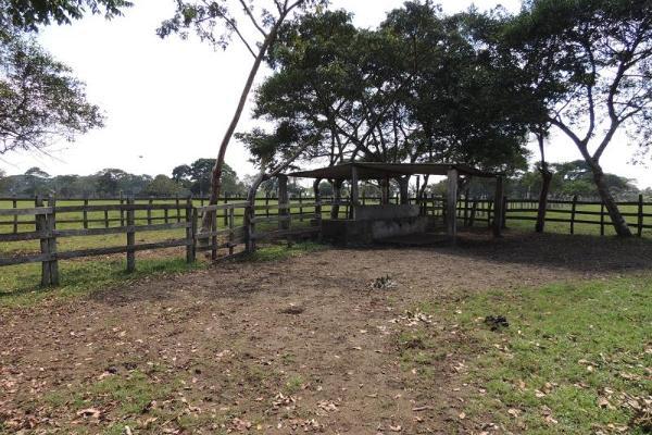 Foto de terreno habitacional en venta en laguna de los limones , huimanguillo, huimanguillo, tabasco, 8294017 No. 13