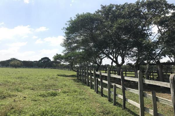 Foto de terreno habitacional en venta en laguna de los limones , huimanguillo, huimanguillo, tabasco, 8294017 No. 14