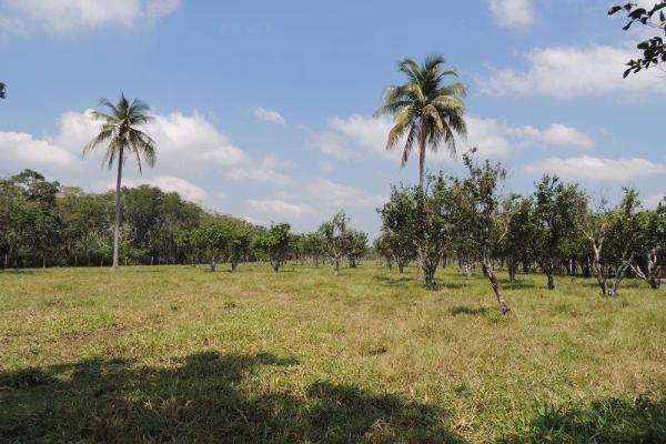 Foto de terreno habitacional en venta en laguna de los limones , huimanguillo, huimanguillo, tabasco, 8294017 No. 15