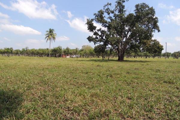 Foto de terreno habitacional en venta en laguna de los limones , huimanguillo, huimanguillo, tabasco, 8294017 No. 16