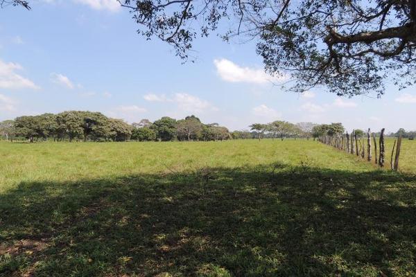Foto de terreno habitacional en venta en laguna de los limones , huimanguillo, huimanguillo, tabasco, 8294017 No. 17