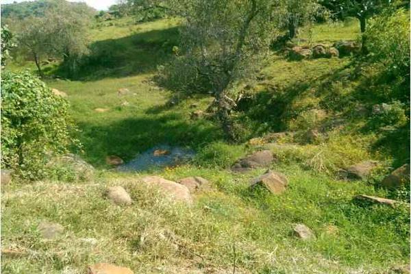Foto de terreno industrial en venta en lagunilla 0, atotonilco el alto centro, atotonilco el alto, jalisco, 7140544 No. 05