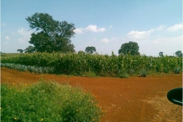 Foto de terreno industrial en venta en lagunilla 20, atotonilco el alto centro, atotonilco el alto, jalisco, 7140544 No. 01