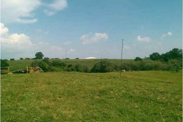 Foto de terreno industrial en venta en lagunilla 20, atotonilco el alto centro, atotonilco el alto, jalisco, 7140544 No. 03