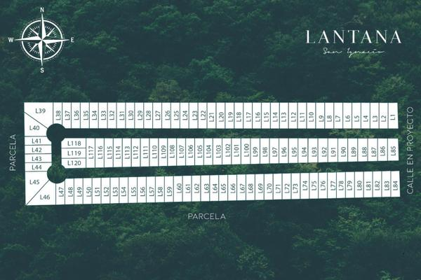 Foto de terreno habitacional en venta en lantana , san ignacio, progreso, yucatán, 9282032 No. 04