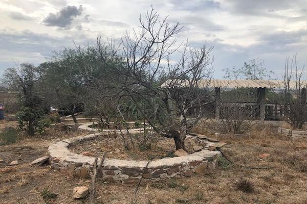 Foto de terreno habitacional en venta en  , las corraletas (familia castillo), tequisquiapan, querétaro, 10024991 No. 06