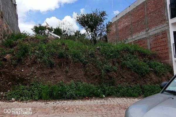 Foto de terreno comercial en venta en las flores 13, villas cervantinas, guanajuato, guanajuato, 0 No. 03