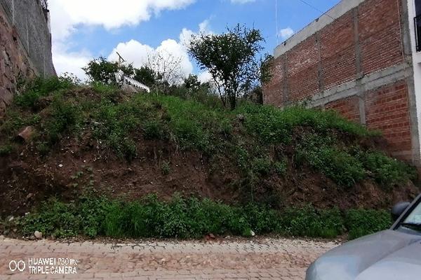 Foto de terreno comercial en venta en las flores 13, villas cervantinas, guanajuato, guanajuato, 0 No. 04