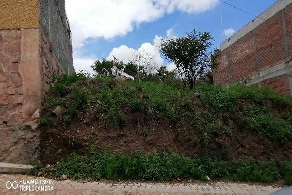 Foto de terreno comercial en venta en las flores 13, villas cervantinas, guanajuato, guanajuato, 0 No. 06