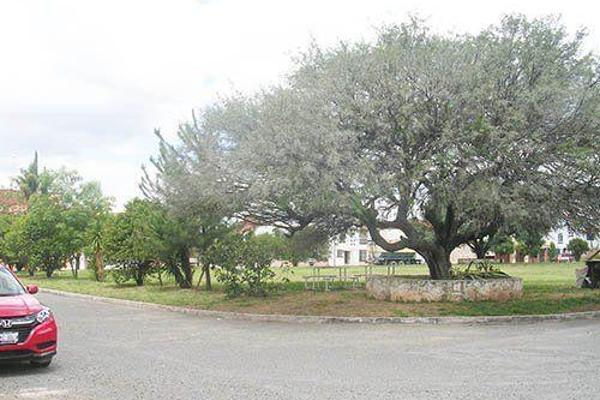 Foto de terreno habitacional en venta en  , las fuentes, ezequiel montes, querétaro, 8050873 No. 03