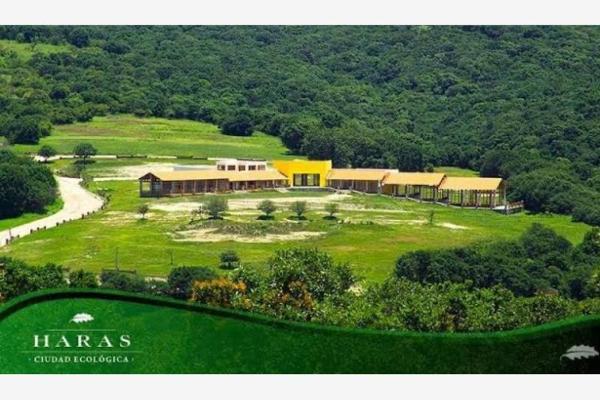 Foto de terreno habitacional en venta en  , las hadas mundial 86, puebla, puebla, 0 No. 03