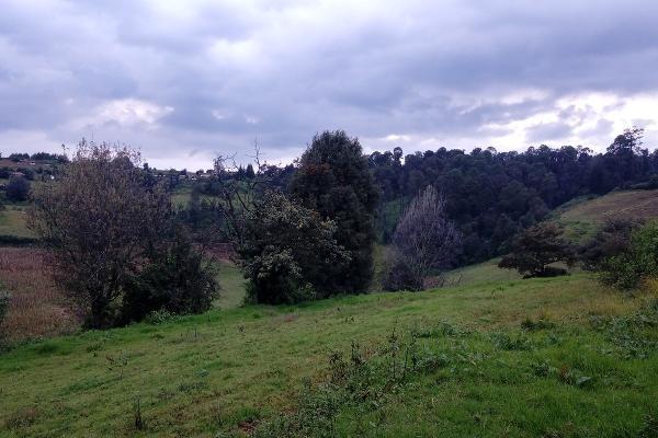 Foto de terreno habitacional en venta en las joyitas , mesas de dolores, valle de bravo, méxico, 4634795 No. 06