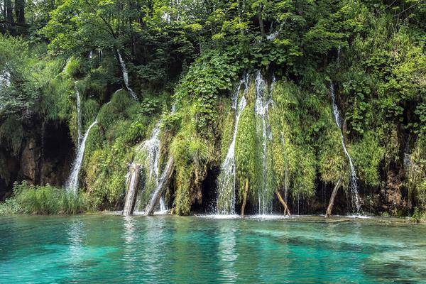 Foto de terreno habitacional en venta en las tichas a , del carmen, ciudad valles, san luis potosí, 14461707 No. 18