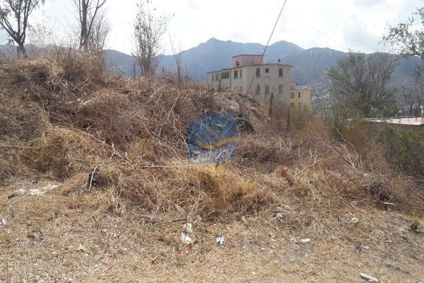 Foto de terreno habitacional en venta en  , las torres, chilpancingo de los bravo, guerrero, 14024114 No. 02