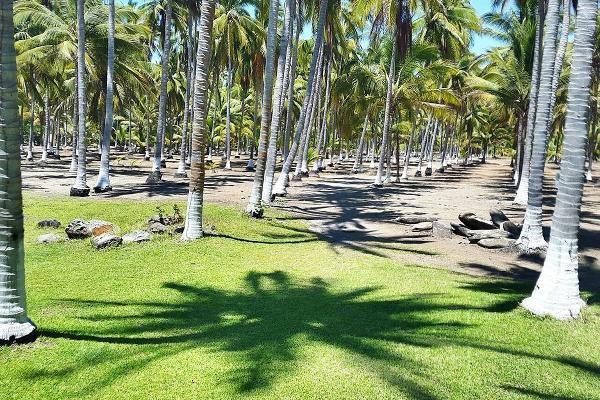 Foto de terreno habitacional en venta en  , las varas centro, compostela, nayarit, 5683183 No. 06