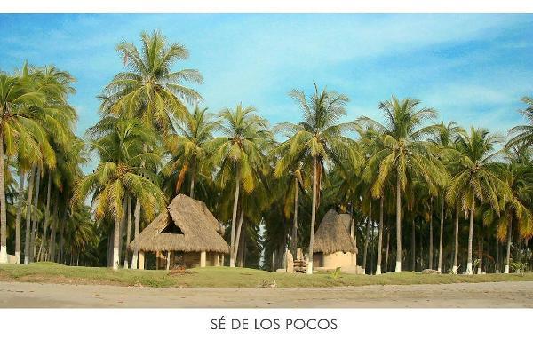 Foto de terreno habitacional en venta en  , las varas centro, compostela, nayarit, 5683183 No. 11