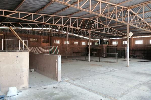 Foto de nave industrial en venta en laurel , parque ecológico de viveristas, acapulco de juárez, guerrero, 17899280 No. 02