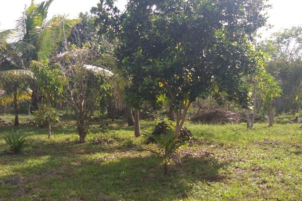Foto de terreno habitacional en venta en leona vicario , leona vicario, benito juárez, quintana roo, 8308338 No. 02