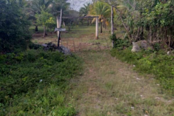 Foto de terreno habitacional en venta en leona vicario , leona vicario, benito juárez, quintana roo, 8308338 No. 04