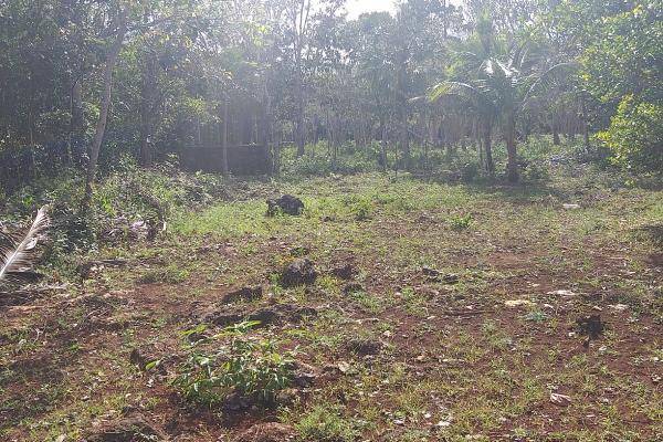 Foto de terreno habitacional en venta en leona vicario , leona vicario, benito juárez, quintana roo, 8308338 No. 09