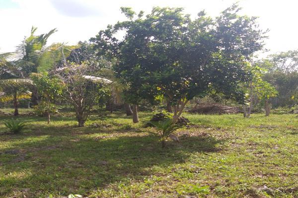 Foto de terreno habitacional en venta en leona vicario , leona vicario, othón p. blanco, quintana roo, 8308338 No. 02