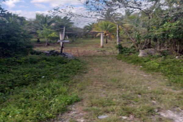 Foto de terreno habitacional en venta en leona vicario , leona vicario, othón p. blanco, quintana roo, 8308338 No. 04