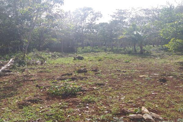 Foto de terreno habitacional en venta en leona vicario , leona vicario, othón p. blanco, quintana roo, 8308338 No. 05