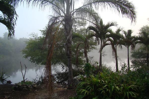 Foto de terreno habitacional en venta en  , leona vicario, othón p. blanco, quintana roo, 2644956 No. 02