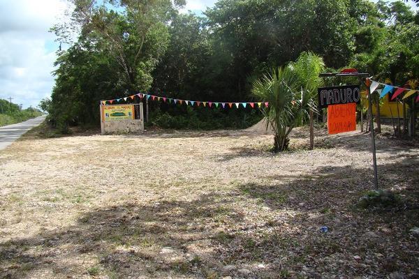 Foto de terreno habitacional en venta en  , leona vicario, othón p. blanco, quintana roo, 2644956 No. 03