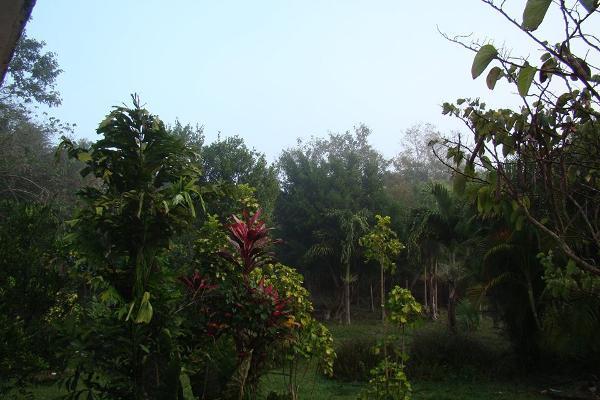 Foto de terreno habitacional en venta en  , leona vicario, othón p. blanco, quintana roo, 2644956 No. 05