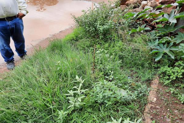 Foto de terreno habitacional en venta en  , libertad, aguascalientes, aguascalientes, 16808978 No. 05