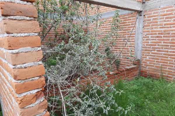 Foto de terreno habitacional en venta en  , libertad, aguascalientes, aguascalientes, 16808978 No. 12