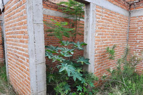 Foto de terreno habitacional en venta en  , libertad, aguascalientes, aguascalientes, 16808978 No. 14