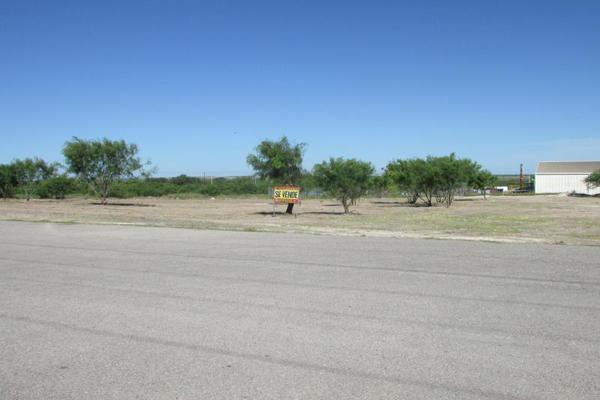 Foto de terreno industrial en venta en libramiento jose lopez portillo , san joaquín, piedras negras, coahuila de zaragoza, 1388129 No. 09