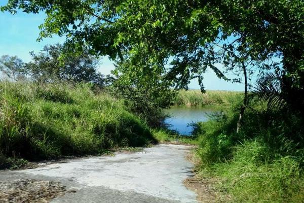 Foto de terreno habitacional en venta en  , chairel, tampico, tamaulipas, 7305791 No. 02