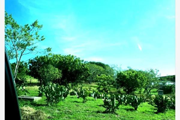 Foto de terreno habitacional en venta en  , chairel, tampico, tamaulipas, 7305791 No. 04