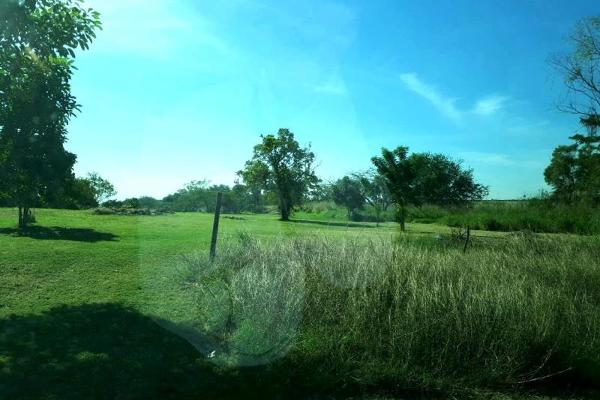 Foto de terreno habitacional en venta en  , chairel, tampico, tamaulipas, 7305791 No. 06