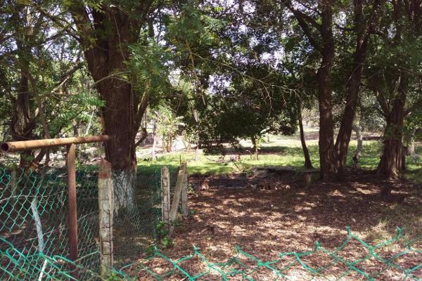 Foto de terreno comercial en venta en  , lindavista, pueblo viejo, veracruz de ignacio de la llave, 3141325 No. 02