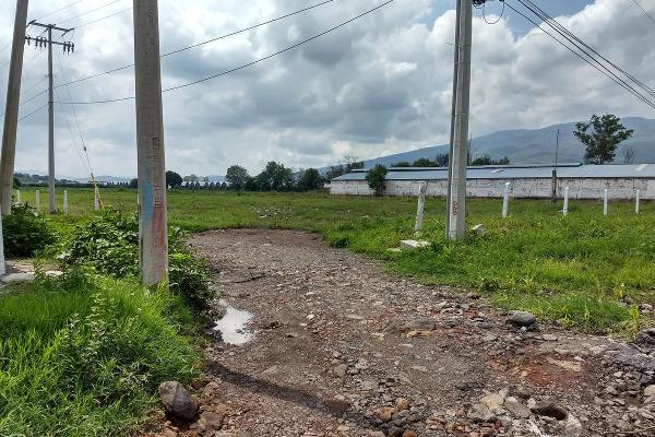 Foto de terreno habitacional en venta en  , jardines de sahuayo, sahuayo, michoacán de ocampo, 8022088 No. 04