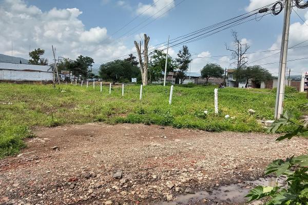 Foto de terreno habitacional en venta en  , jardines de sahuayo, sahuayo, michoacán de ocampo, 8022088 No. 06