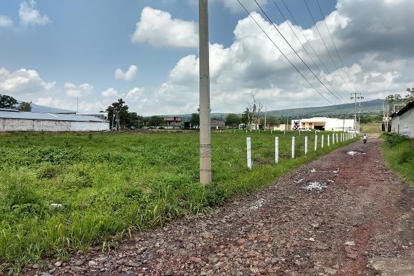 Foto de terreno habitacional en venta en  , jardines de sahuayo, sahuayo, michoacán de ocampo, 8022088 No. 07