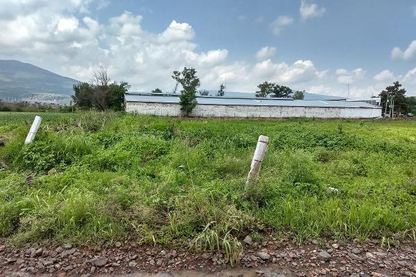 Foto de terreno habitacional en venta en  , jardines de sahuayo, sahuayo, michoacán de ocampo, 8022088 No. 08
